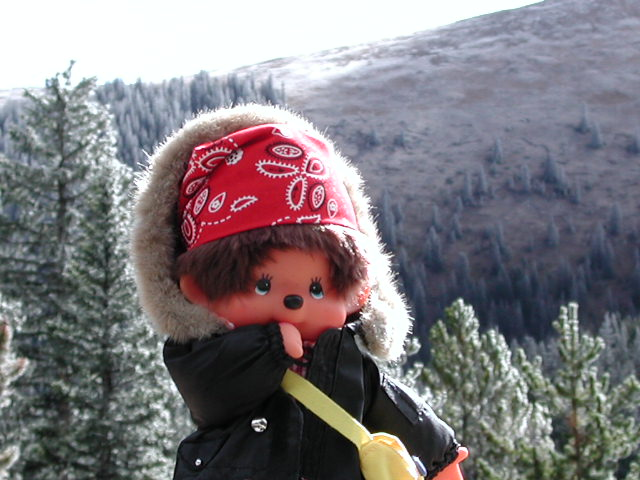 Monchhichi in Colorado USA 2004